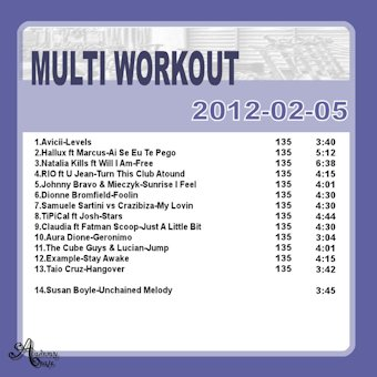 MultiWorkout#2012-02-05
